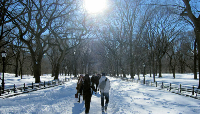 Wetter in New York - Winter