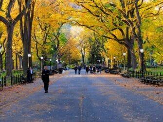 Rundgang zu den Filmdrehorten im Central Park - The Mall