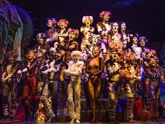Cats am Broadway Tickets - Ensemble
