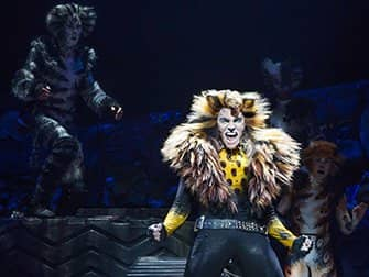 Cats am Broadway Tickets - Solo