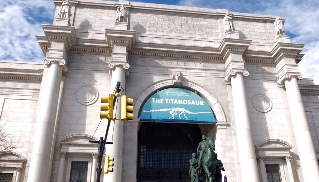 Top New York Museen - American Museum of Natural History