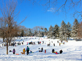 Schnee in New York - Central Park